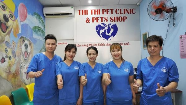 Những điều cần lưu ý khi phối giống chó Chihuahua - Bệnh viện Thú Y Thi Thi TP HCM