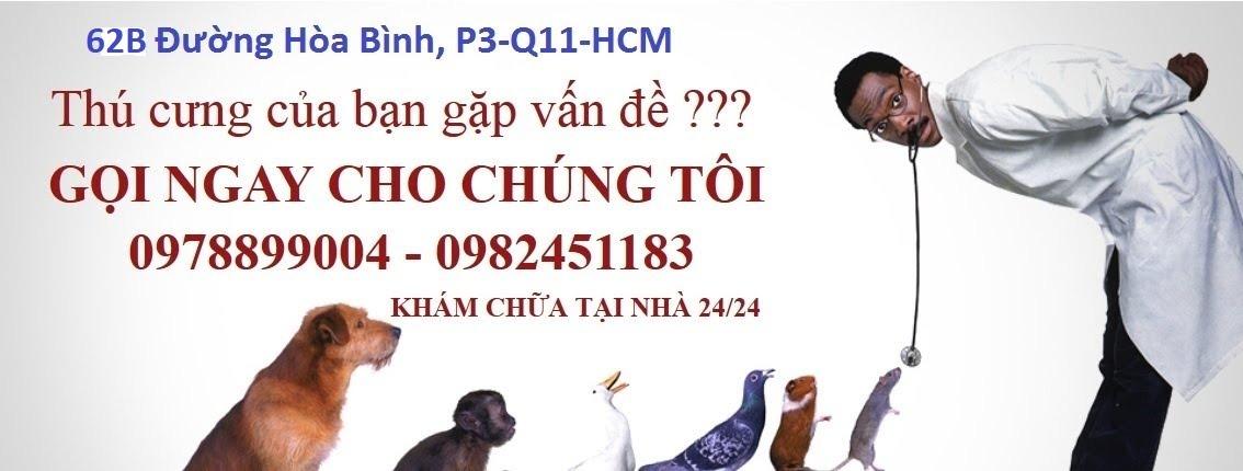 phong-kham-thu-y-mo-cua-24-24-tai-tp-hcm3